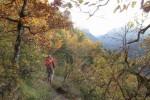 Couleurs d'automne dans les Gorges du Tarn